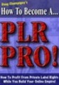 Thumbnail How To Become A Plr Pro