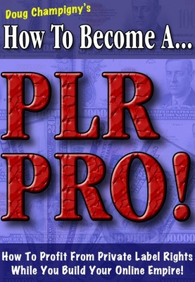 Product picture How To Become A Plr Pro